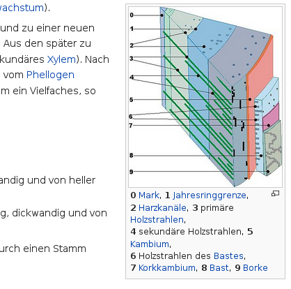 Holz-Artikel bei Wikipedia 05.png